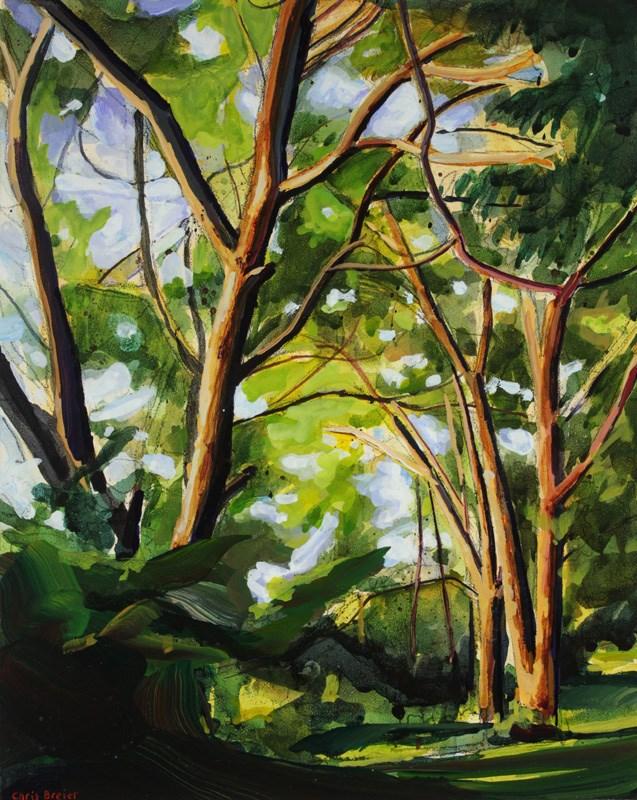 """""""Niawanda Park"""" original fine art by Chris Breier"""
