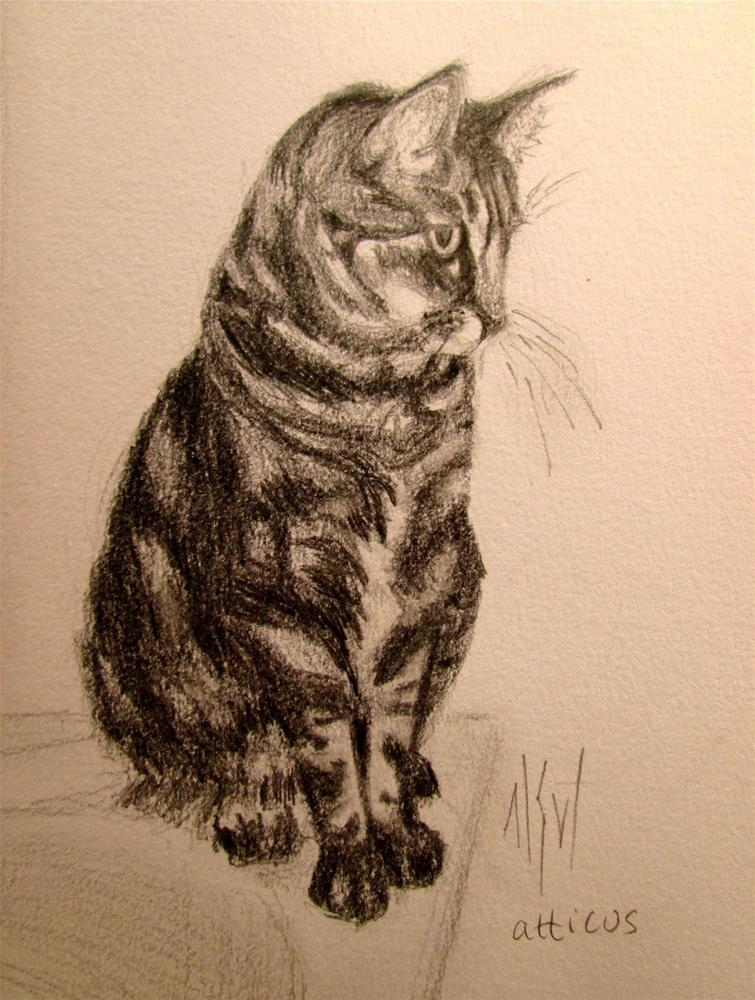 """""""Cat Challenge ~ Atticus Graphite sketch of a cat named Atticus. Will include mat with this drawing."""" original fine art by Mary Sheehan Winn"""