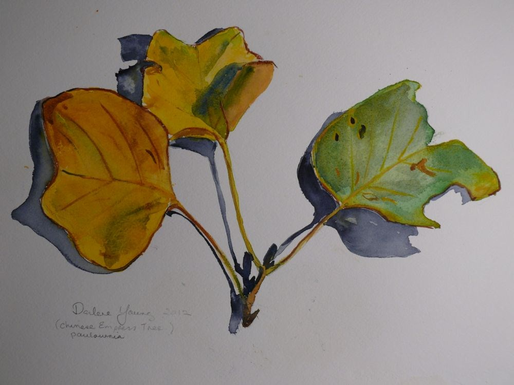 """571 Chinese Empress Leaves"" original fine art by Darlene Young"