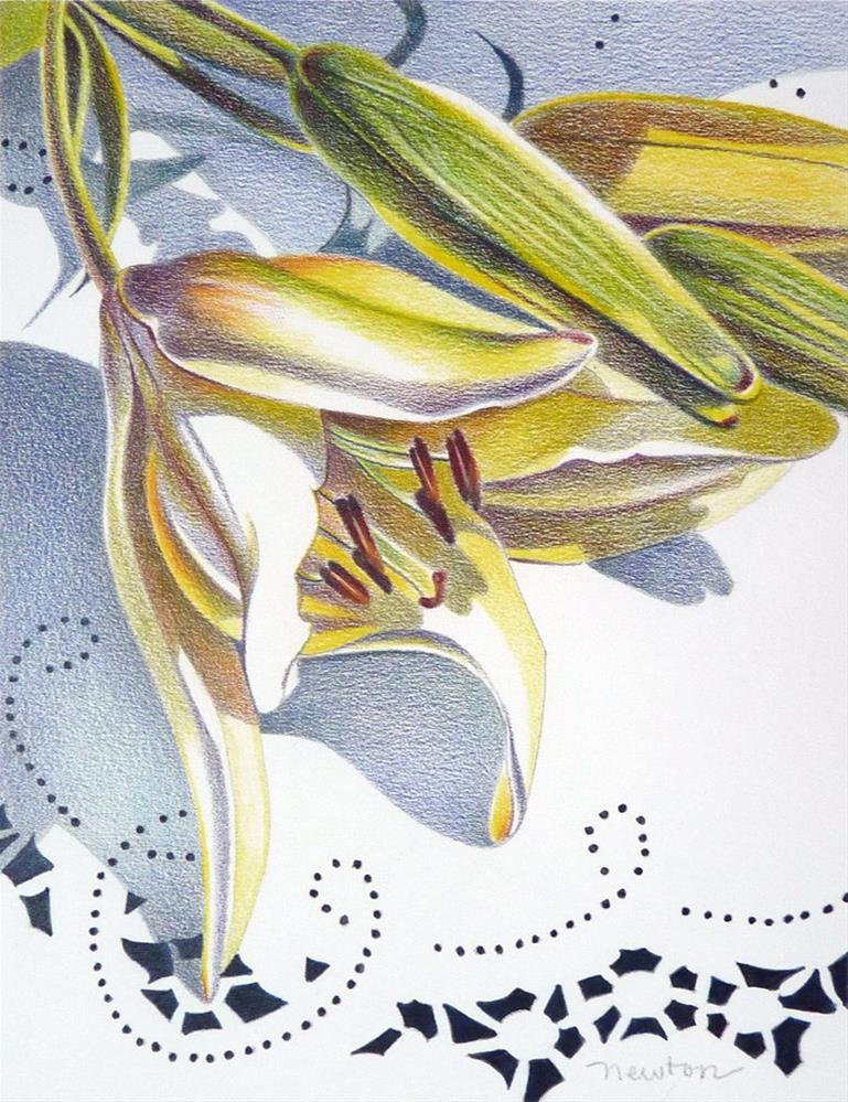 """Lilies and Lace"" original fine art by Barbara Benedetti Newton"