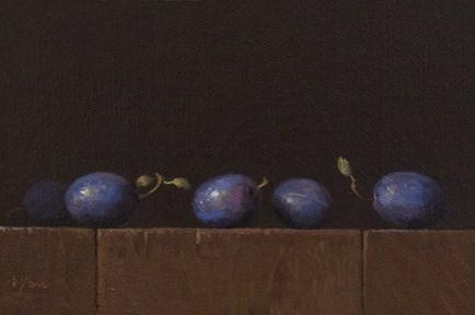 """Row of Italian Plums"" original fine art by Abbey Ryan"
