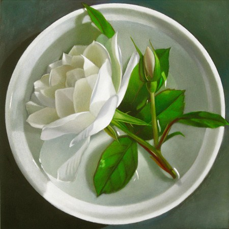 """""""White Rose In Bowl Of Water 6x6"""" original fine art by M Collier"""