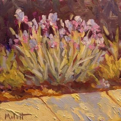 """Lost Painting Found $80 from 2008 Bearded Iris Flowers"" original fine art by Heidi Malott"