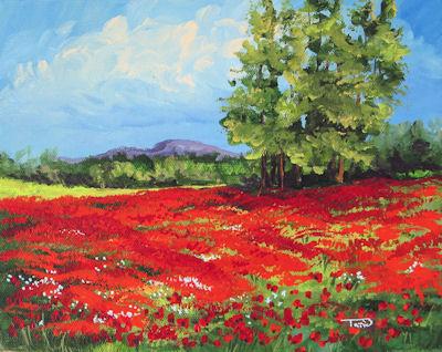"""Carolina Poppies"" original fine art by Torrie Smiley"