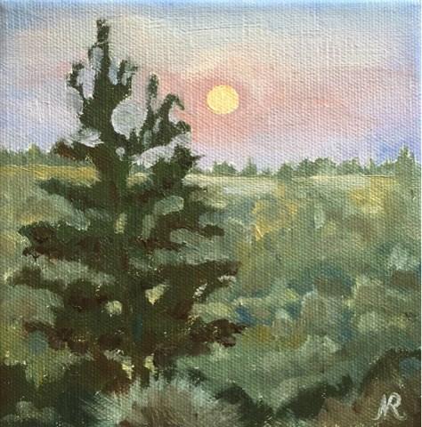"""Juniper at dusk"" original fine art by Natasha Ramras"
