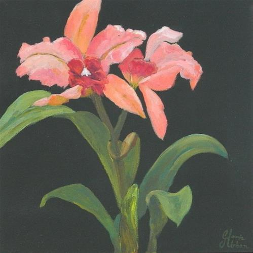 """Orchid #2"" original fine art by Gloria Urban"