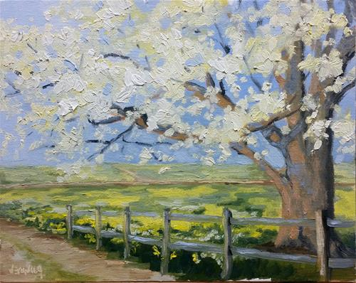 """Spring at Shaw-study#1 en plein air"" original fine art by Veronica Brown"