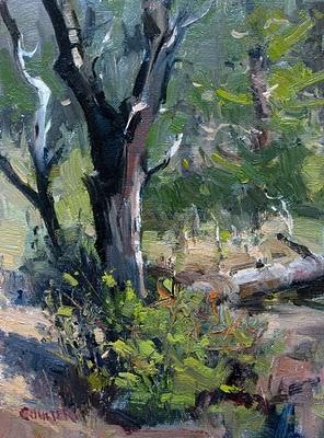 """PRESCOTT BURNED TREE"" original fine art by James Coulter"