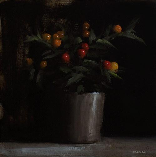"""Winter Cherry Plant"" original fine art by Neil Carroll"