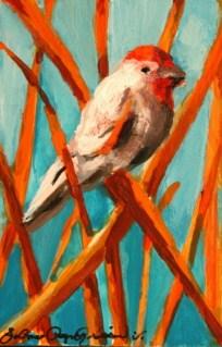 """Fine-Feathered Friends"" original fine art by JoAnne Perez Robinson"