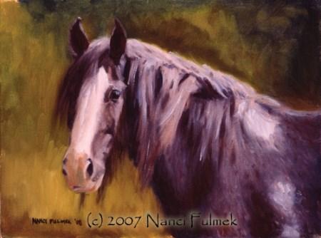 """Angus Shire horse portrait"" original fine art by Nanci Fulmek"
