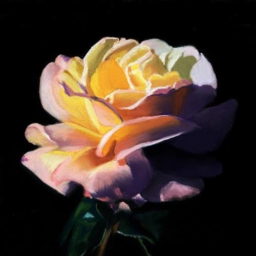 """Dramatic Rose pastel painting"" original fine art by Ria Hills"