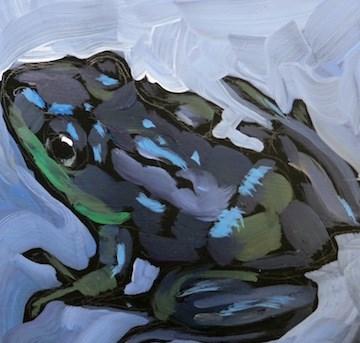 """""""Slick Wet Frog"""" original fine art by Kat Corrigan"""