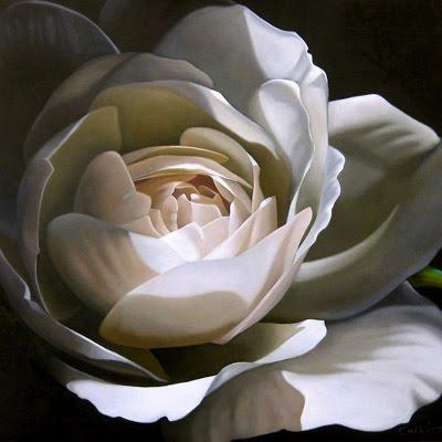 """Rose In Shadow 24x 24"" original fine art by M Collier"