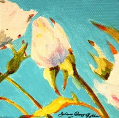 """White buds"" original fine art by JoAnne Perez Robinson"