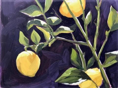 """Backyard Lemons, Plein Air"" original fine art by Sharon Schock"