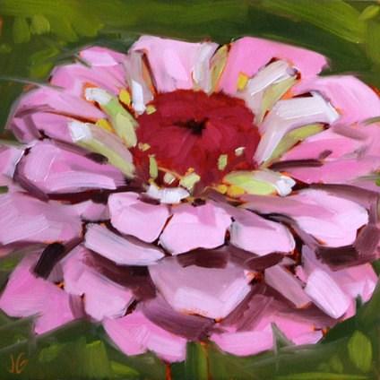 """""""Light Pink Zinnia"""" original fine art by Jessica Green"""