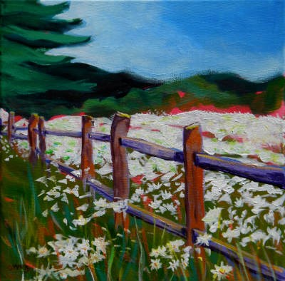 """Daisies At The Fence"" original fine art by Pam Van Londen"