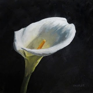 """""""Lily In The Light"""" original fine art by Michael Naples"""