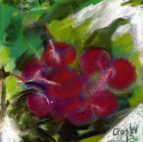 """Radish"" original fine art by Donna Crosby"