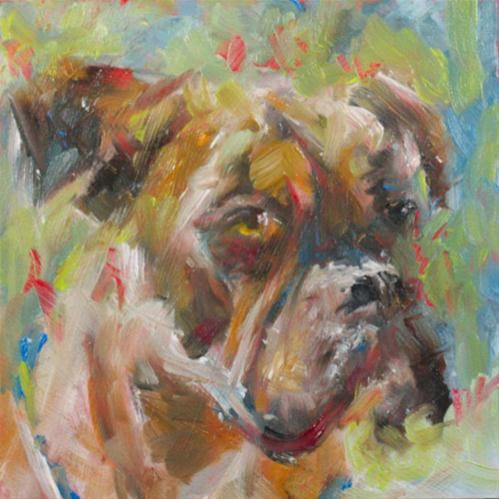 """Bulldog Study"" original fine art by Sue Churchgrant"