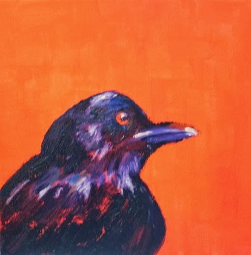 """""""Bird, Contemporary Animal Paintings by Arizona Artist Amy Whitehouse"""" original fine art by Amy Whitehouse"""