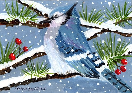 """NFAC Bluejay in the Snow"" original fine art by Patricia Ann Rizzo"