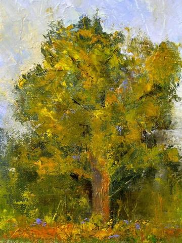 """TreeStudy/St.Edwards Park"" original fine art by Blanche Niznik"