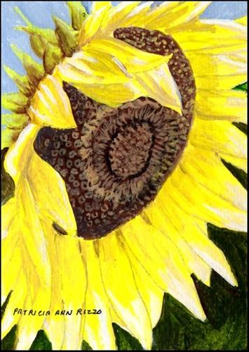 """One Big Sunflower"" original fine art by Patricia Ann Rizzo"