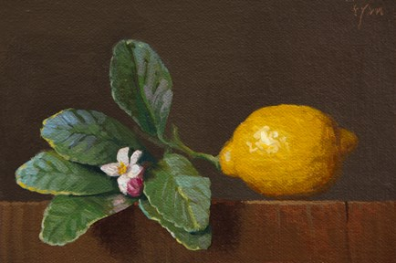 """Lemon with Leaves, Flower, and Bud (+ Fantin-Latour)"" original fine art by Abbey Ryan"