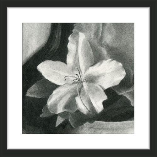"""White Azalea"" original fine art by Ester Wilson"