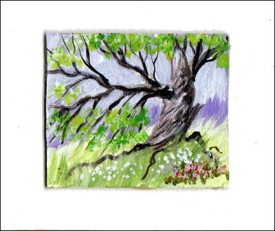 """""""The Old Tree"""" original fine art by Patricia Ann Rizzo"""
