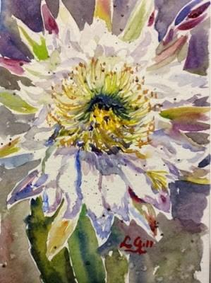 """Cactus Flower"" original fine art by Lyn Gill"