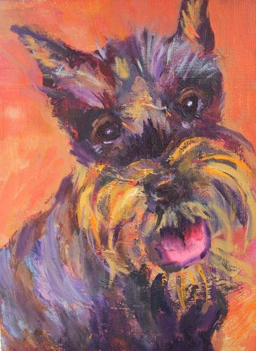 """Schatzie Dog Portrait Paintings by Arizona Artist Amy Whitehouse"" original fine art by Amy Whitehouse"
