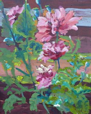 """Poppies"" original fine art by Darlene Young"