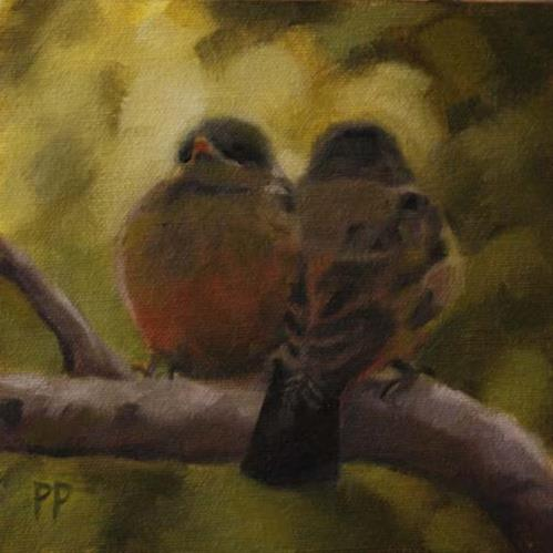 """Says Phoebe Fledglings"" original fine art by Pamela Poll"