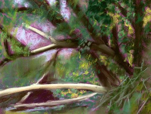 """""""One Side Of The Creek"""" original fine art by Donna Crosby"""