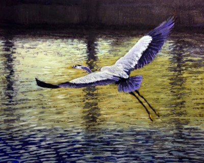 """Great Blue Heron"" original fine art by David Larson Evans"