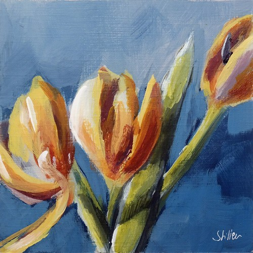 """2730 February Tulips II"" original fine art by Dietmar Stiller"