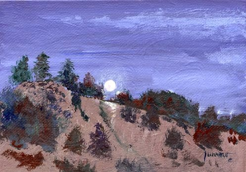 """ORIGINAL LANDSCAPE PAINTING OF SUPER MOON"" original fine art by Sue Furrow"