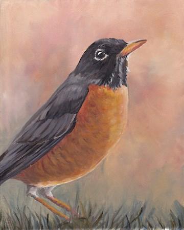 """Robin"" original fine art by Charlotte Yealey"