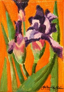 """Iris and Q. Gold"" original fine art by JoAnne Perez Robinson"