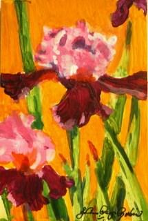 """Two Toned"" original fine art by JoAnne Perez Robinson"