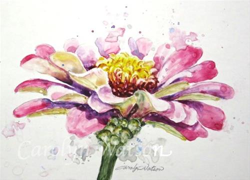 """Pink Zinnia"" original fine art by carolyn watson"