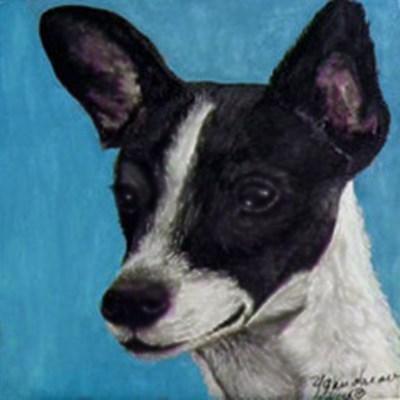 """Rat Terrier"" original fine art by Yvette Gaudreau"