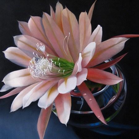 """Epiphyllum 8x8"" original fine art by M Collier"