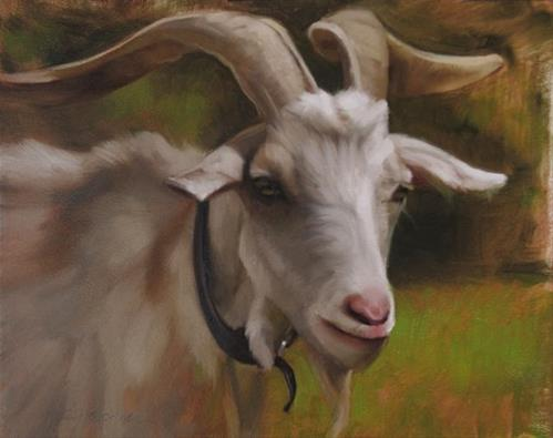 """""""Goat It's a painting of a goat!"""" original fine art by Diane Hoeptner"""