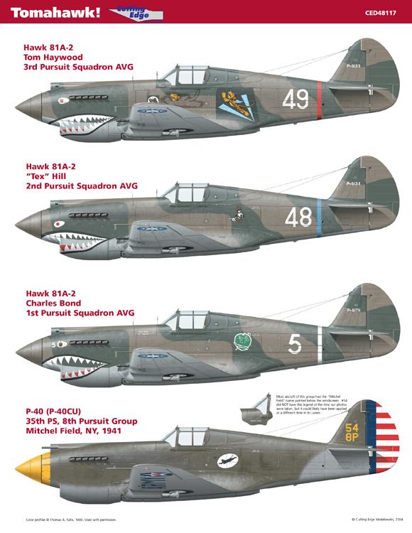 WWII CBI AVG AMERICAN VOLUNTEER GROUP FLYING TIGERS 3rd Sqn Hells Angels PATCH