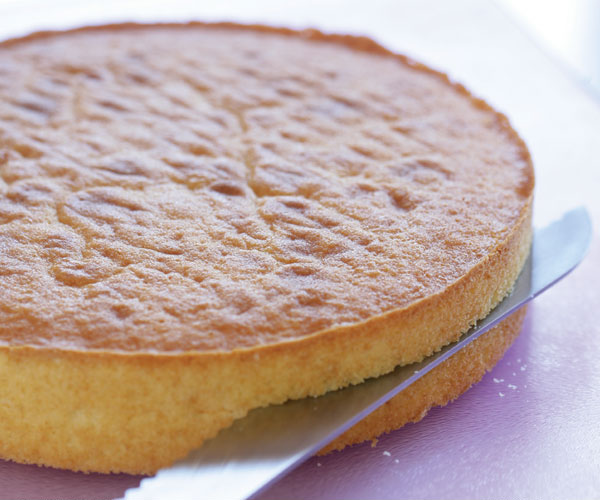 Sponge Cake Recipe With Plain Flour