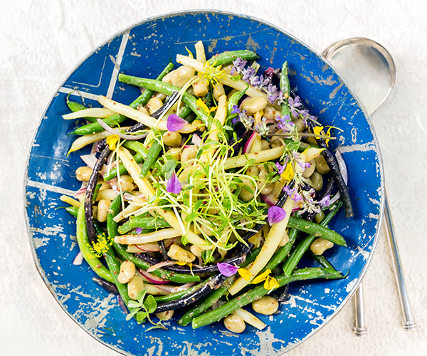 Mixed Bean Salad with Red Onion Vinaigrette